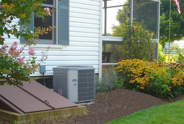 O arbusto para disfarçar ar condicionado