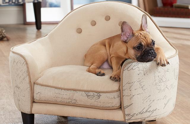 O sofá é realmente um bonito acessório