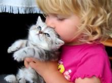 Animais de estimação ajudam as crianças a superar alergias