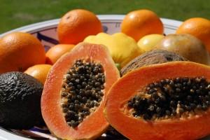 Reabasteça-se com os benefícios do mamão Papaya