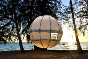 Cocoon Tree: A barraca presa em uma árvore