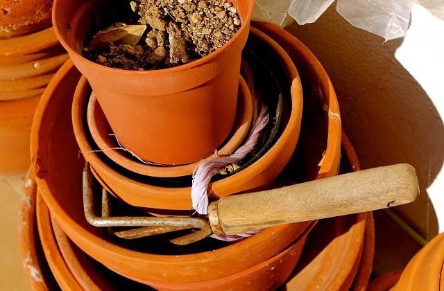 Como escolher o vaso certo para as plantas