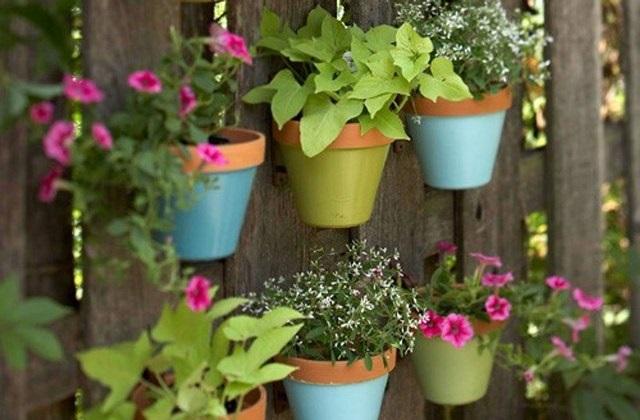 Como decorar um Jardim vertical idéias e dicas