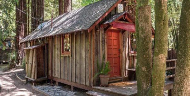 Vende casas da árvore longe da poluição e caos da cidade