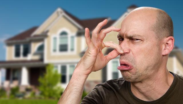 Os remédios naturais (faça você mesmo) para eliminar os maus cheiros em casa