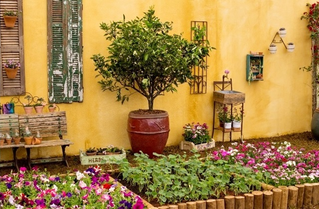 decorar um pequeno jardim