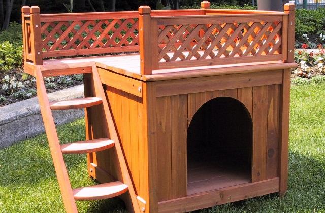 Original casinha de cachorro ... com terraço!