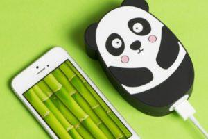 Panda power bank!
